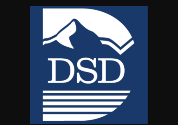 Dsd Canvas Logo