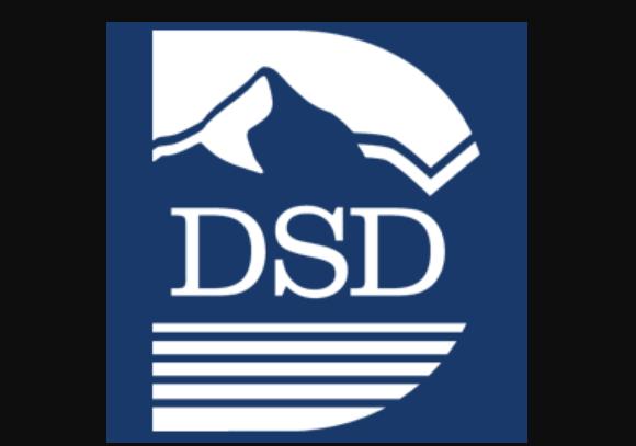 Dsd Canvas Logo